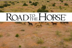 road-to-the-horse_wylene1_compressed