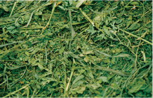 An alfalfa grass hay mix