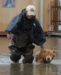Person with Dog in Flood