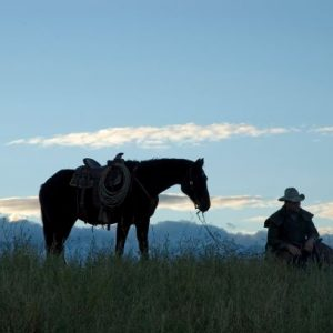 John Samsill Horse Soundness