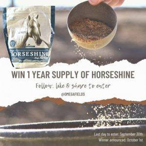 Win Year Supply of Omega Horseshine